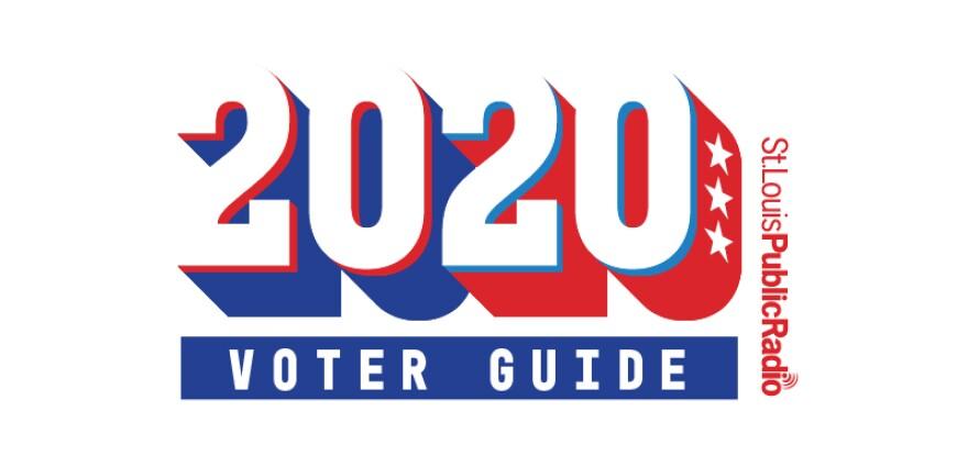 2020-voter-guide.jpg
