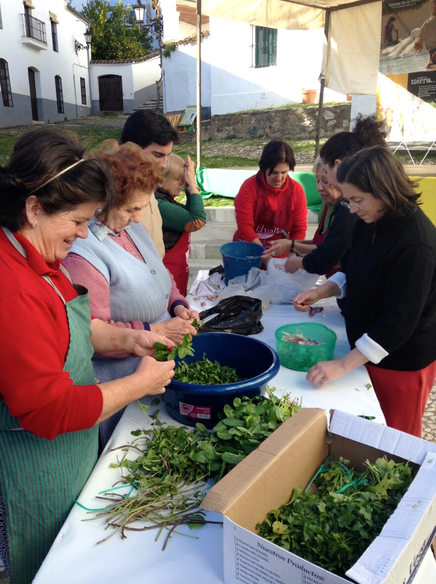 Village women chop herbs for use in sausage at a <em>matanza</em> festival in the village of Linares, population 300, in the Sierra Aracena, in southwestern Spain.