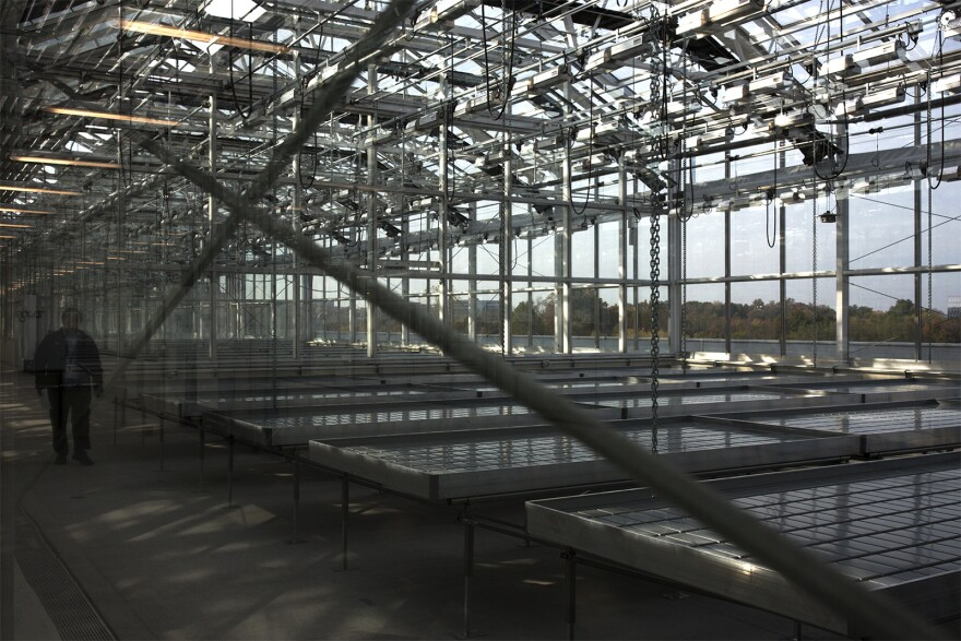 A visitor walks through a new 105,000-square-foot greenhouse structure at the Monsanto Chesterfield Research Center on Oct. 28, 2016.