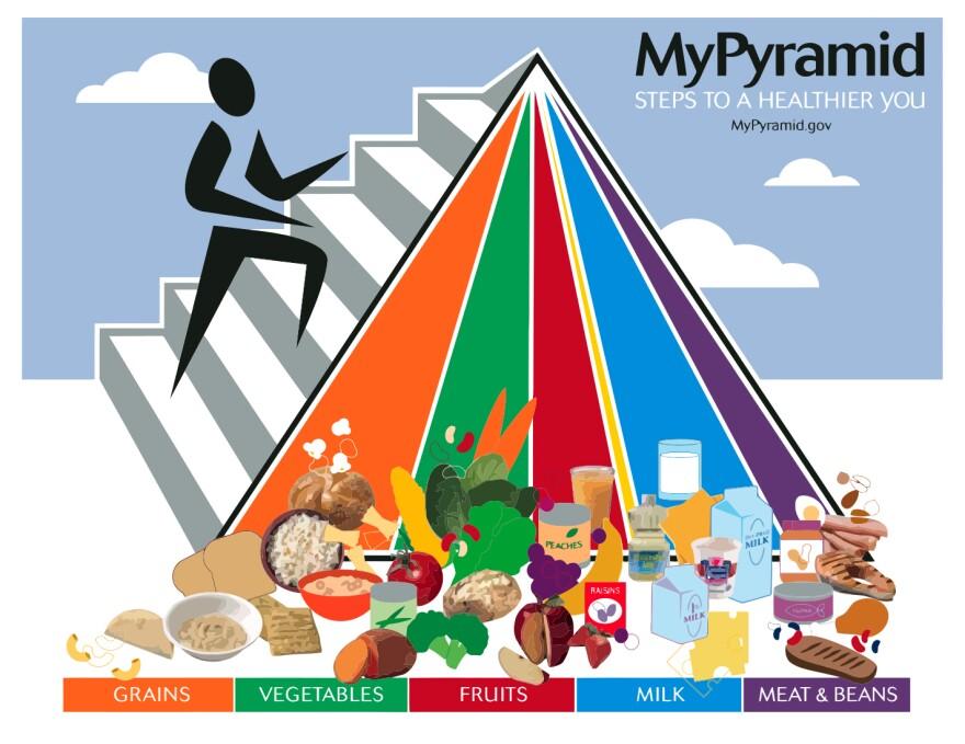 2005 My Pyramid