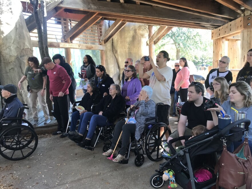 Dallas Zoo visitors watch trainers work with lions at the Wild Gatherings event on Monday, March 25, 2019.