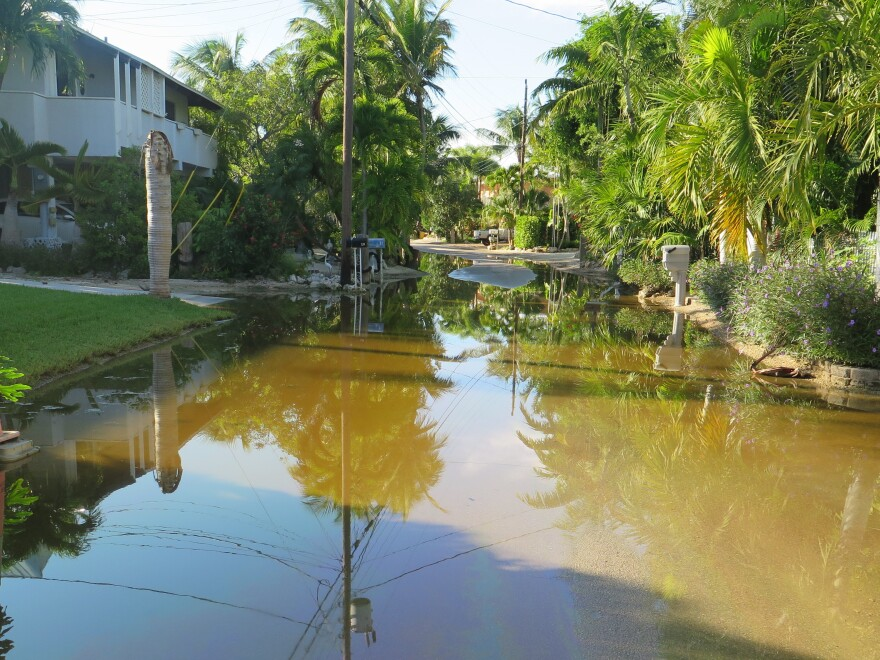 Residents in Key Largo say their streets have been flooded for more than two months from a series of king tides.