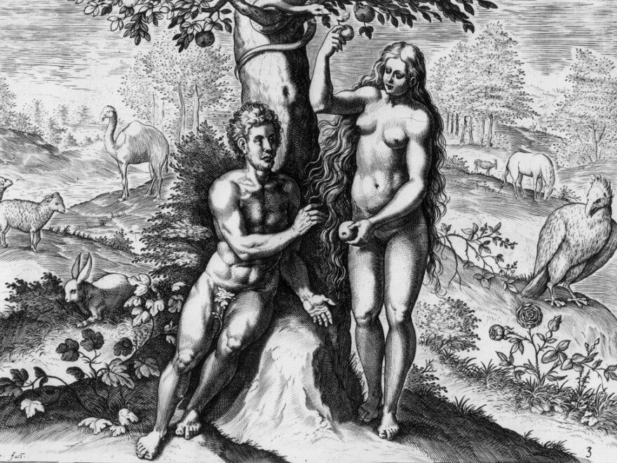 Eve offers Adam the fruit in the garden of Eden in <em>Theatrum Biblicum,</em> a drawing by Johann Fischen (circa 1650). Sex lets a species evolve faster to rapidly adapt to a new environment, researchers say.