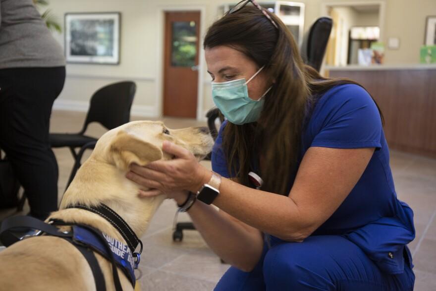 Buffy3_DM_060921.jpg A hospital employee in blue scrubs pets a yellow lab.