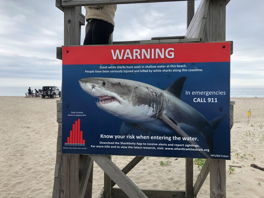 An updated sign bluntly warns beachgoers about sharks in the water at Nauset Beach.