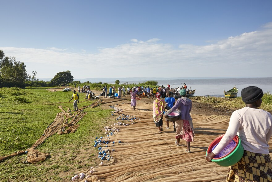 Every morning, women of Nduru Beach head to the shore of Lake Victoria to purchase fish from boats that have been out most of the night.