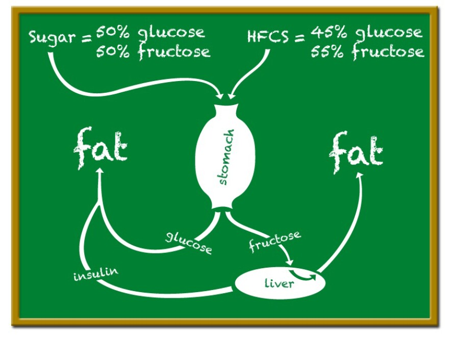 2014-05-30-5-deadly-reasons-to-stop-eating-high-fructose-corn-syrup-2.jpg