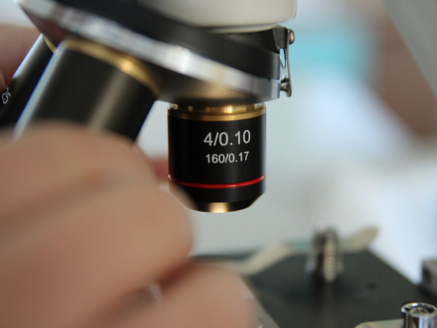 Putting charter school research under a microscope.