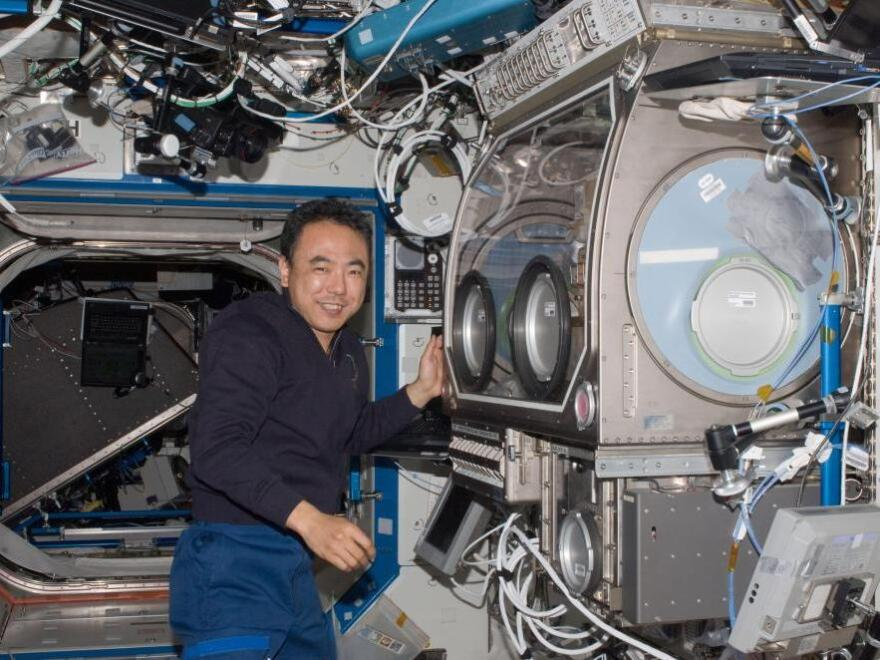 Japanese Astronaut Satoshi Furukawa works near the Microgravity Science Glovebox aboard the International Space Station on June 30. The unit allows space station crew members to assemble and operate science experiments in a controlled environment.