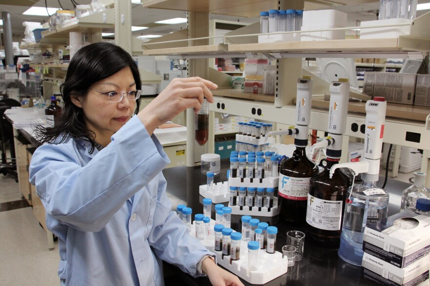 Ping Wan, supervisor of the pesticide laboratory at the Office of the Indiana State Chemist, with samples that may contain pesticide residues.