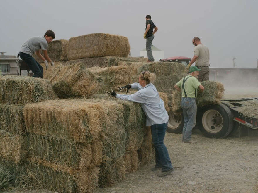 People offload donated hay from a flatbed truck in the lot of the Tech Feed Store in Omak, Wash. The Andrews family's store has been a hub for donations and communications for local ranchers during the Okanogan Complex fires.