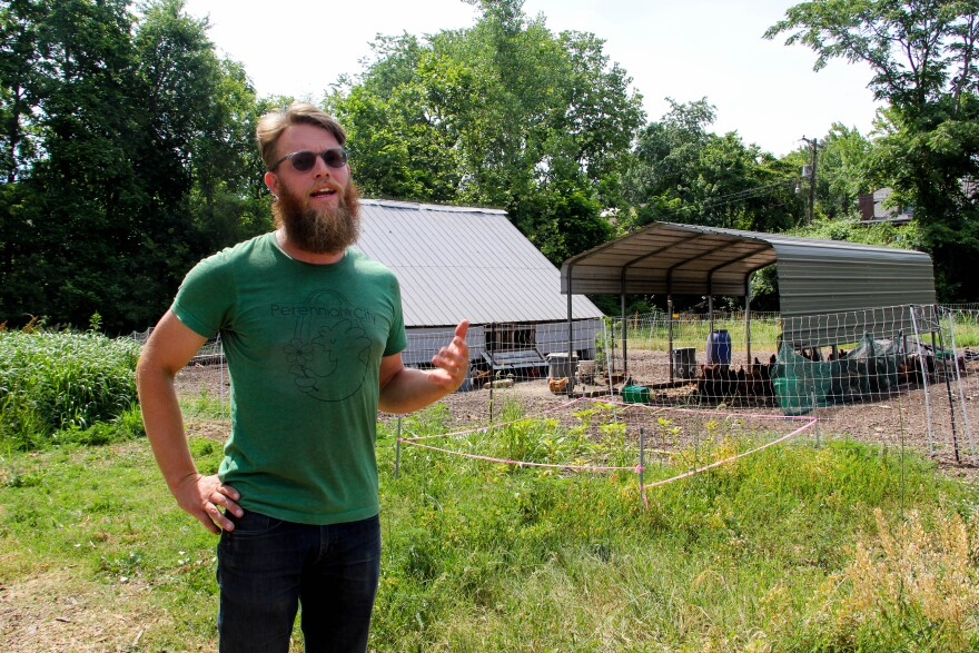Perennial City Composting co-founder Tim Kiefer at his small chicken farm in Visitation Park on June 19, 2020.