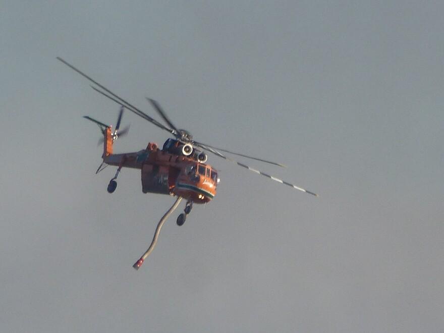 P1030162.JPG