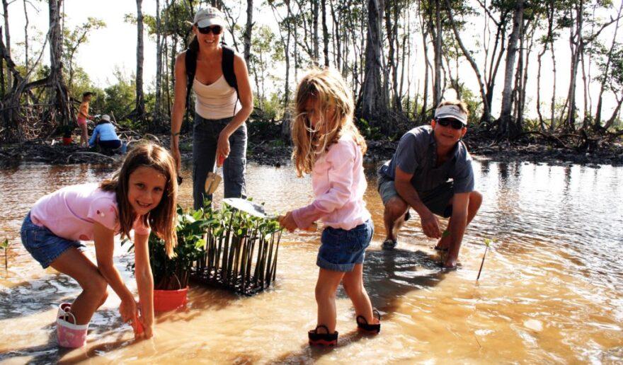 Kids-Planting-Mangroves-1-1024x600.jpg
