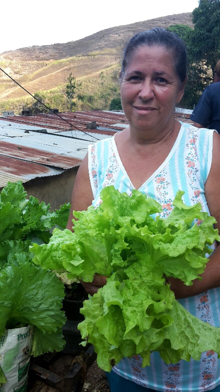 "Josefina Requena holds salad greens she grew herself in a small garden in her yard in a Caracas slum. ""All my life, I've loved to plant all sorts of plants,"" Requena says. ""But over the past two years, things have become much more difficult, so I am taking gardening a little more seriously."""