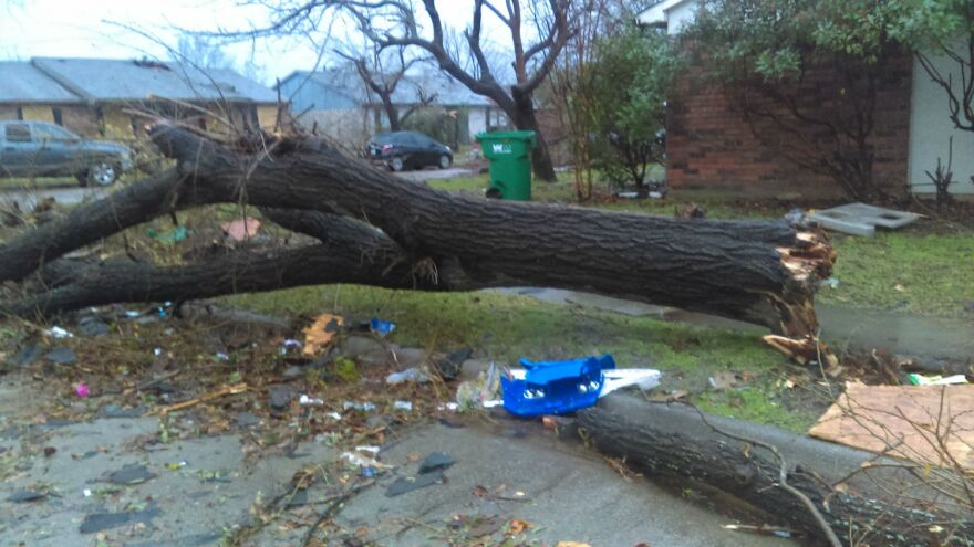 Houses were destroyed and trees were uprooted during the strong winds from Saturday night's tornado in Rowlett.