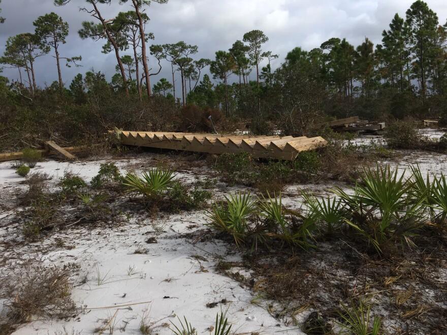 Hurricane Sally Damage 02 Fresh Take Florida 100820.JPG