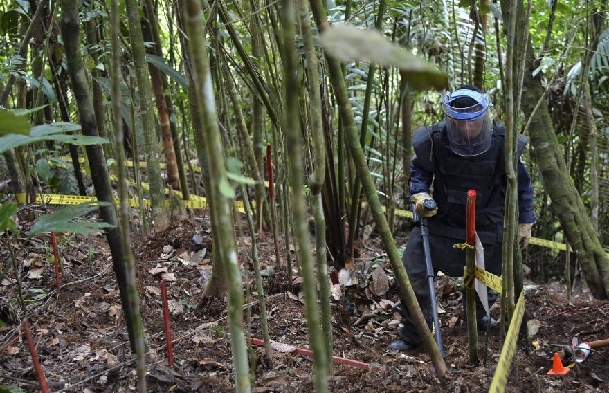 A Colombian soldier searches for land mines laid by rebel fighters.