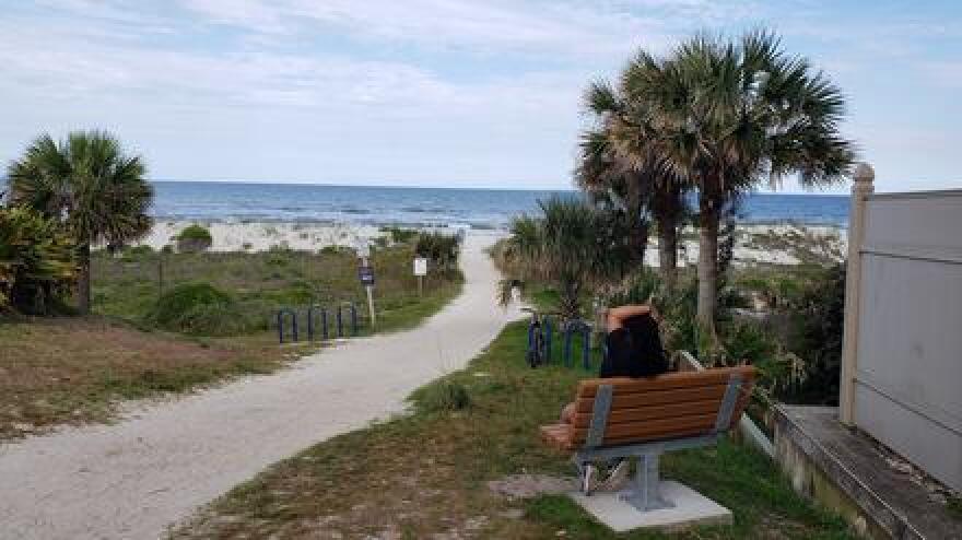 Walkway leading to Duval County beach