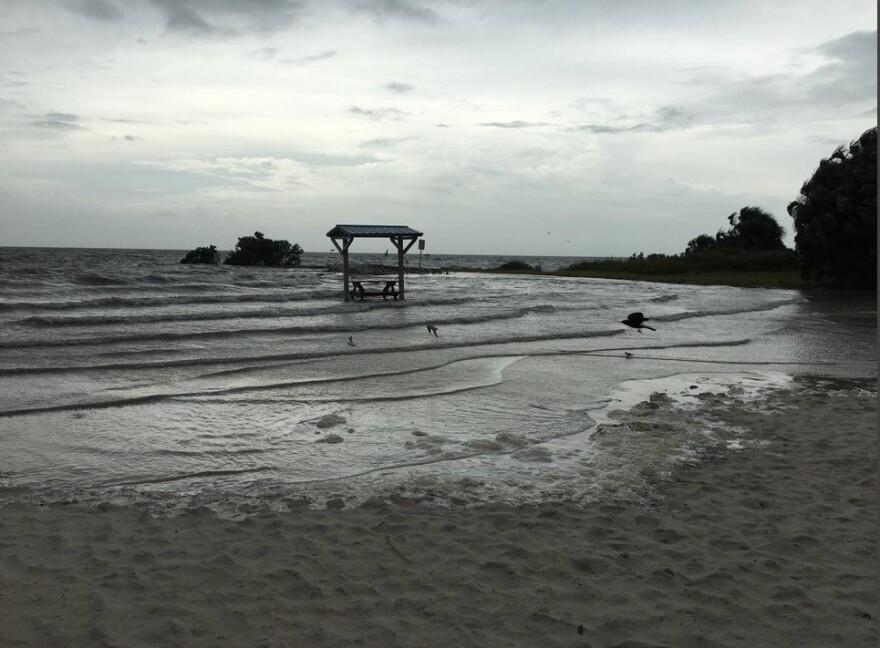 ft_island_beach-crystal_river_10-10-18_citrus_sheriff_1.jpg