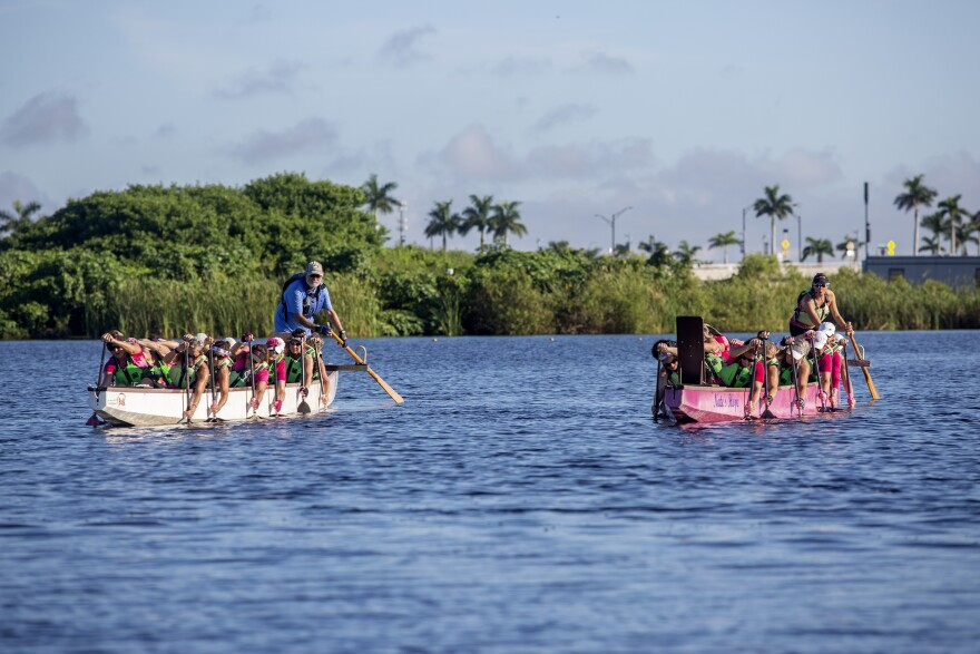 A pink dragon boat and white dragon boat paddle alongside each other during a practice run before competition.
