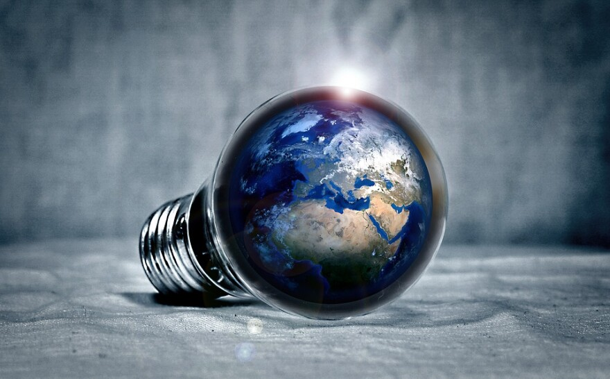 energy_efficiency_light_bulb_earth.jpg