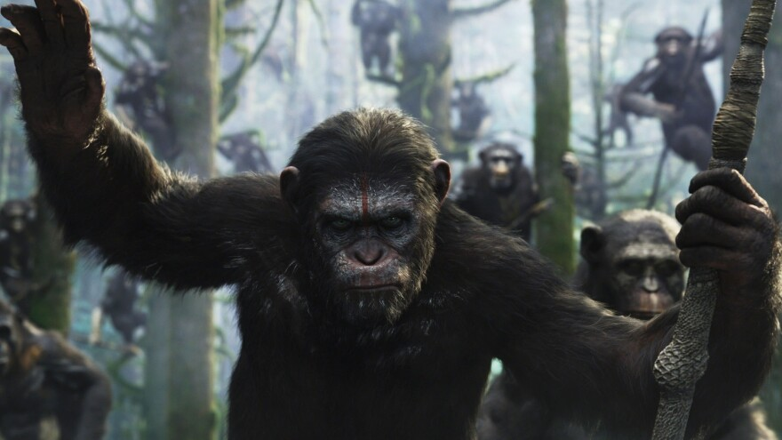 In a post-apocalyptic battle for dominance over Earth, human survivors of a deadly virus face off against an army of highly evolved apes, led by Caesar (Andy Serkis).