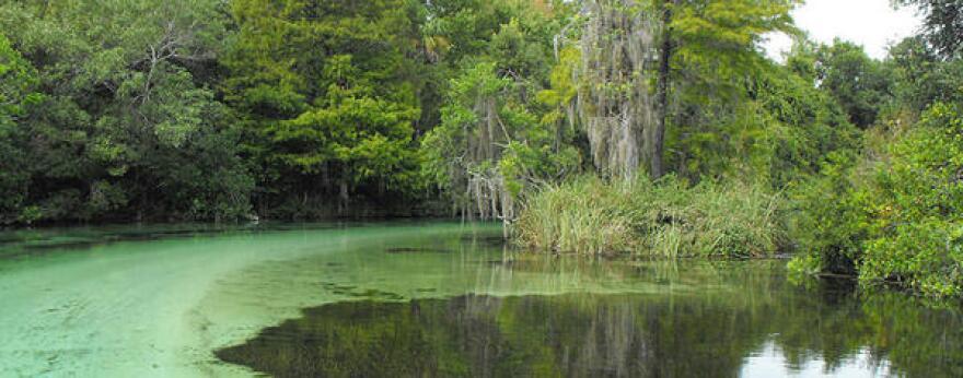 Weeki Wachee Springs, FL