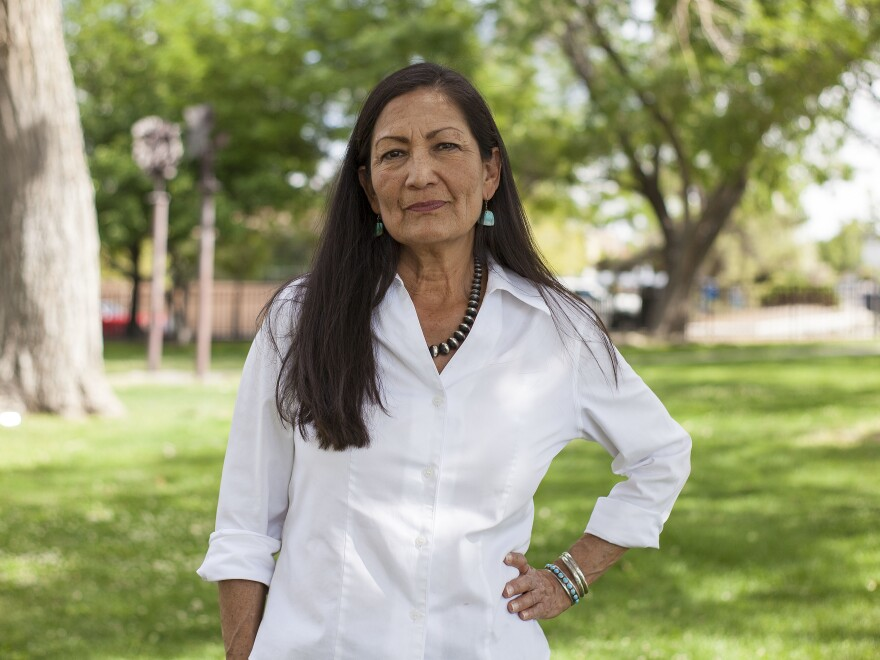 Deb Haaland worked on President Obama's 2008 campaign before chairing New Mexico's Democratic Party. Now she's running for office with a record number of other Native Americans across the country.