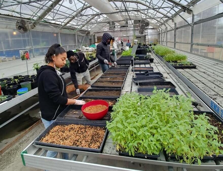 Green Acres Urban Farm