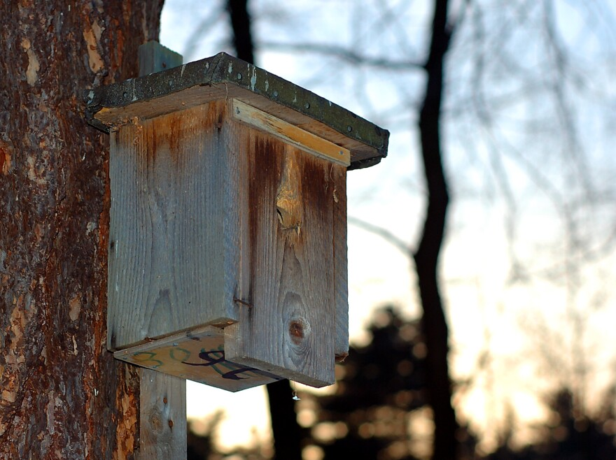 Note- This is not the same birdhouse that prompted the bomb scare.