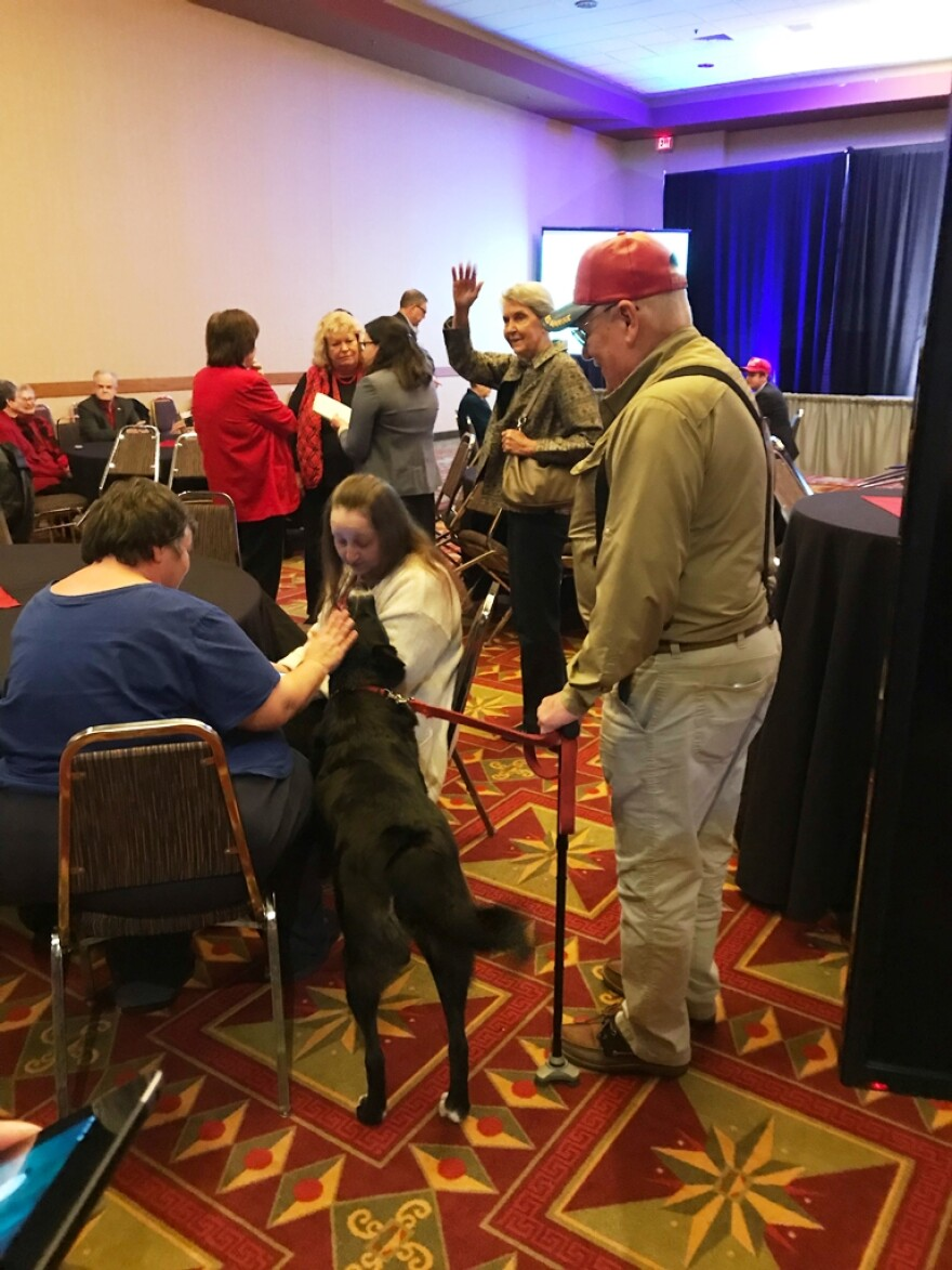 Two- and four-legged supporters of Josh Hawley, the Republican candidate for U.S. Senate, gather at the University Plaza Hotel in Springfield, Missouri. Nov. 6 2018