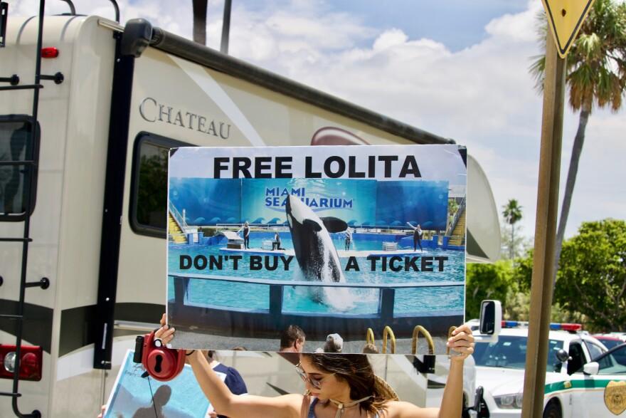 free_lolita_.jpg