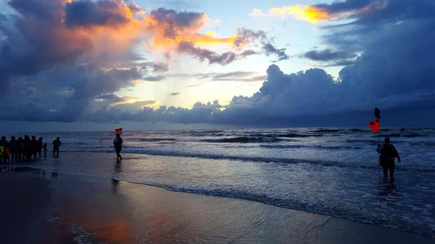 Sea turtle release at Padre Island National Seashore at sunrise in August 2016.