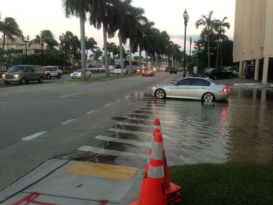 Las_Olas_Blvd_flooded_at_high_tide._-_panoramio.jpg