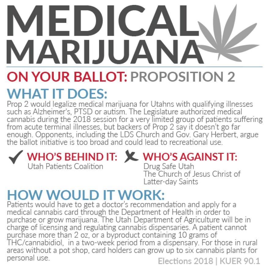 Medical marijuana ballot initiative.