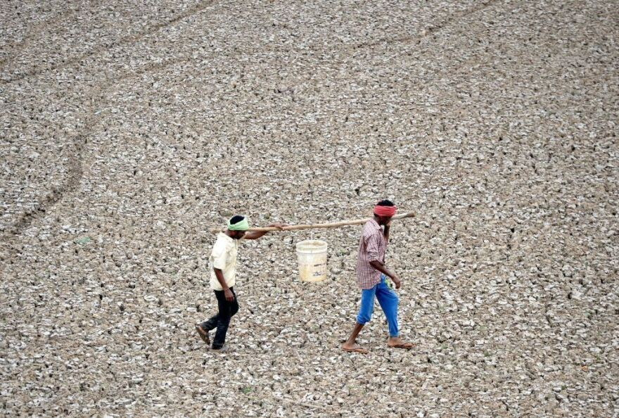 Indian workers carry the last bit of water from a small pond in the dried-out Puzhal reservoir on the outskirts of Chennai.