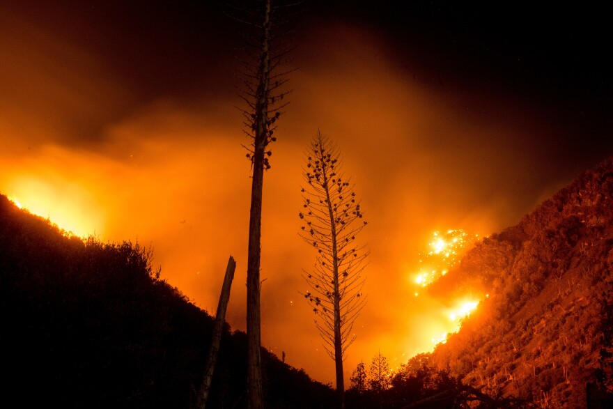 The Blue Cut fire burns in Upper Lytle Creek near Wrightwood, Calif., on Friday.