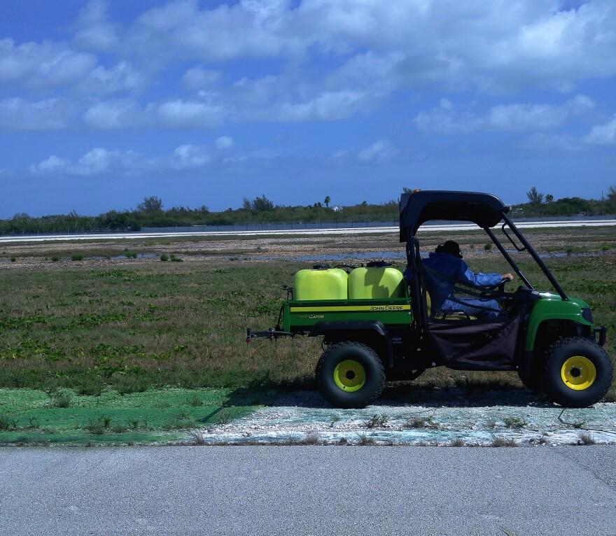 runway_paint_nas_key_west_1.jpg