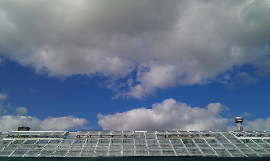 greenhouse_0.jpg