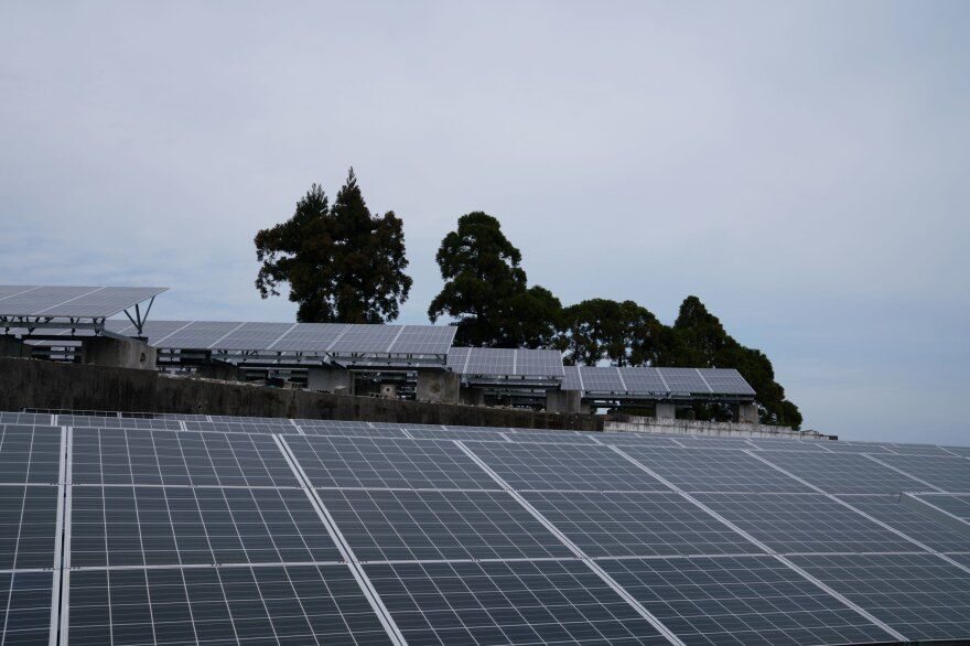 The Endos' solar farm is on the southern Japanese island of Kyushu, as far south as they could drive from Fukushima.