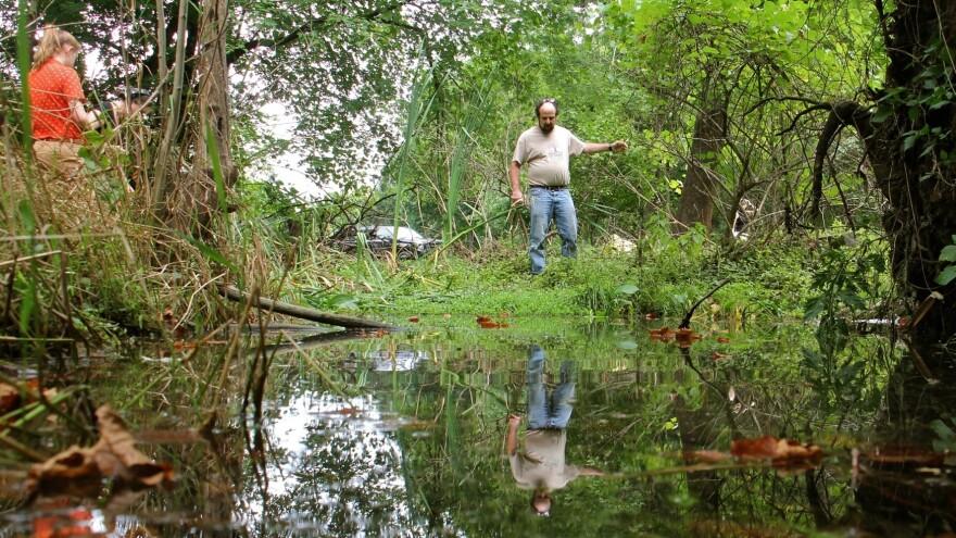 Dr. Richard Niesenbaum and his assistant, Muhlenberg student Lindsay Press, investigate a roadside pond near Cedar Creek in Allentown.