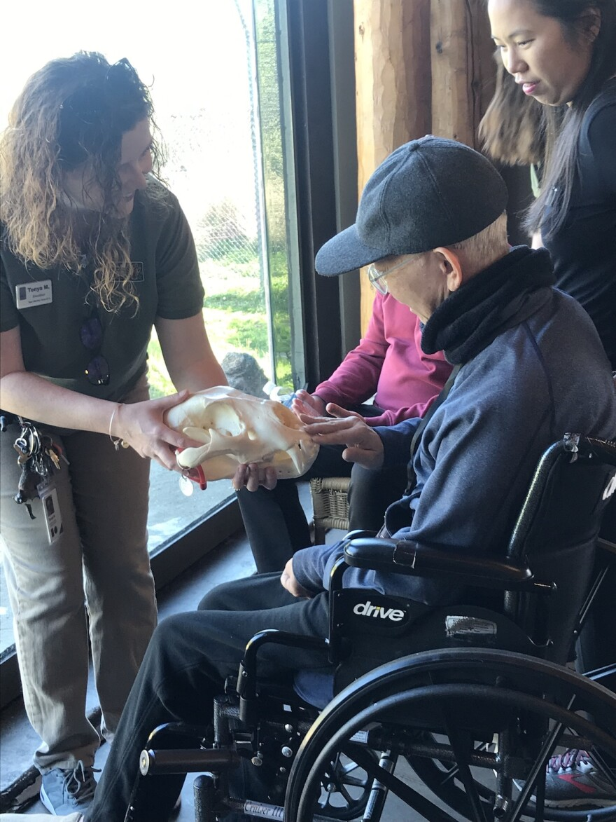 Tonya McDaniel with the Dallas Zoo shows visitors a lion skull during Monday's Wild Gatherings event.