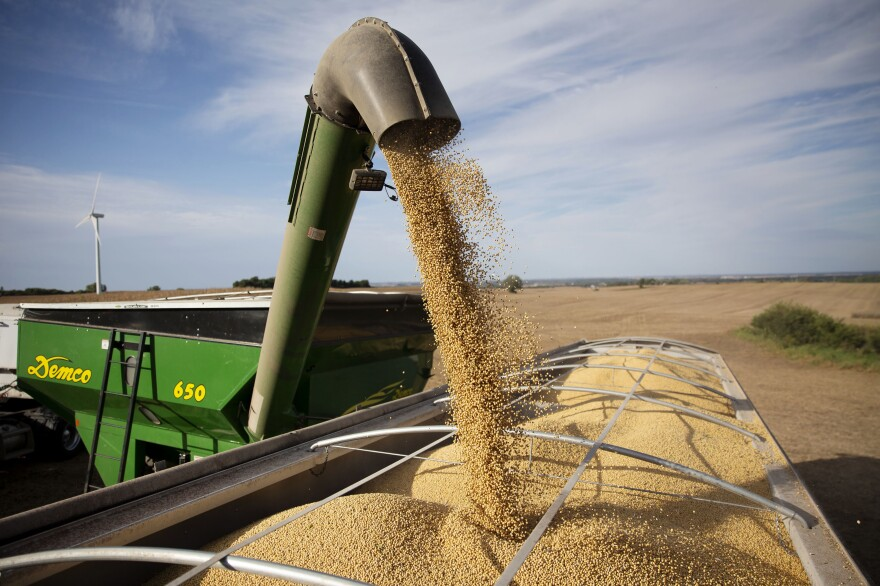 Soybeans are unloaded onto a truck in Tiskilwa, Ill.