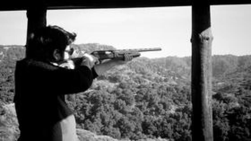 gun_cleft_clips.jpg