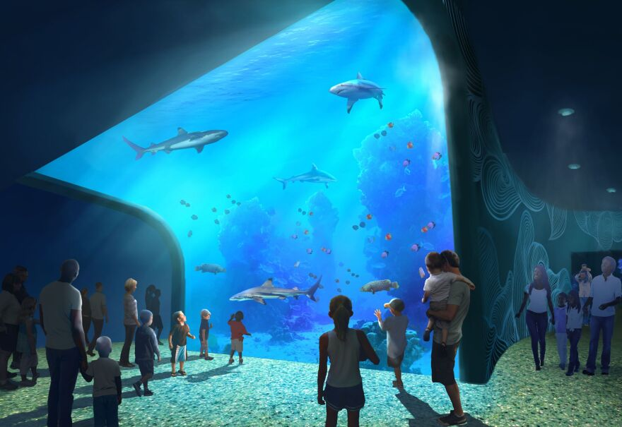 St. Louis Aquarium will house sharks and aquatic animals from around the world.