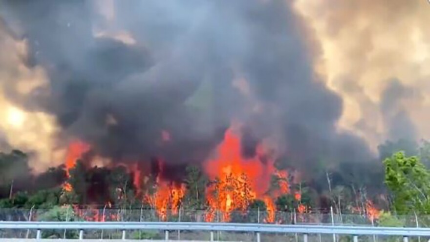 Flames from Collier County wildfire