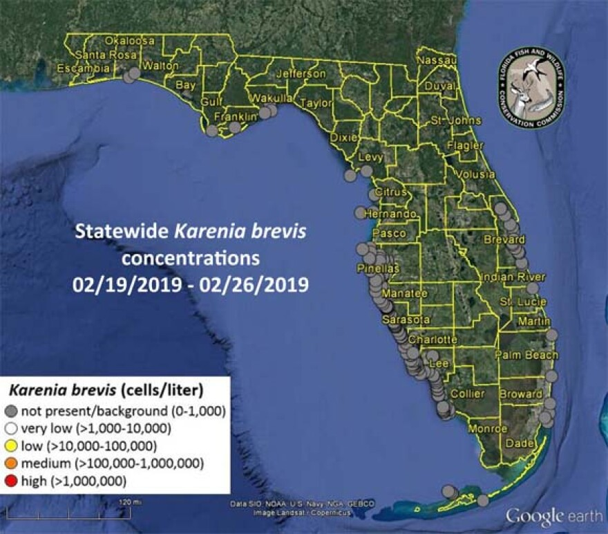 This graphic shows where the red tide organism Karenia brevis was most recently observed in southwest and northwest Florida.