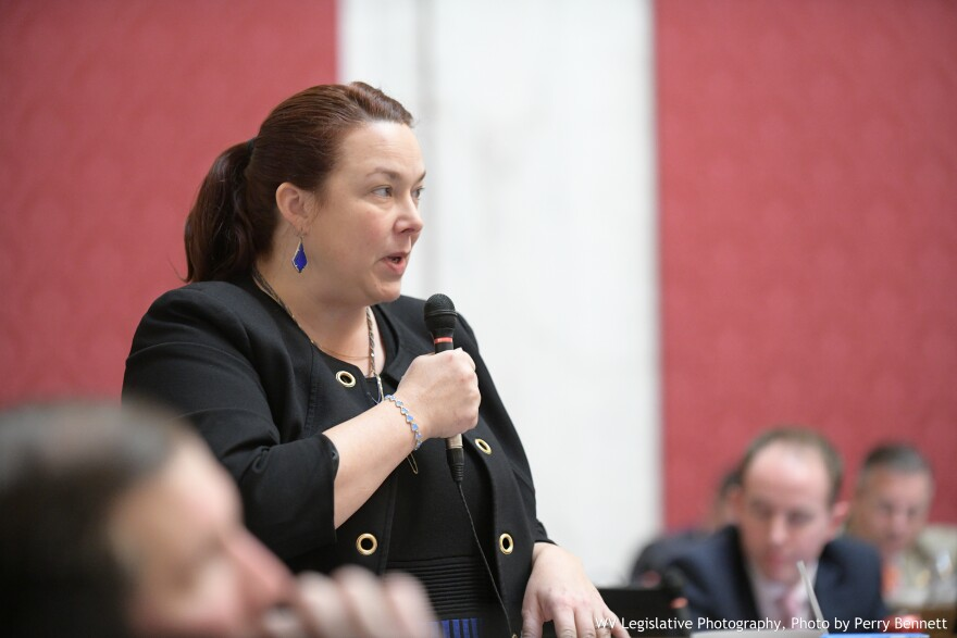 Del. Dianna Graves, R-Kanawha, discusses HB 2941 (reinstating the film investment tax credit) on the House floor on Feb. 27, 2019.