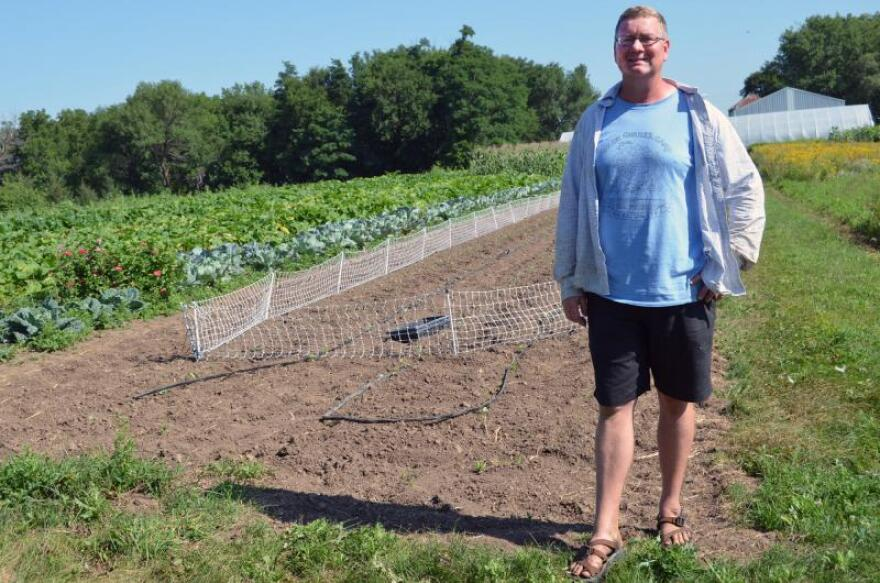 Portable electric fencing lets Mark Quee control which vegetable plots he allows sheep to graze on at the Scattergood Friends School and Farm in West Branch, Iowa.